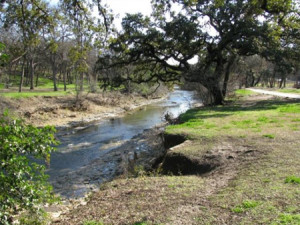 Shoal Creek, near the University of Texas in Austin