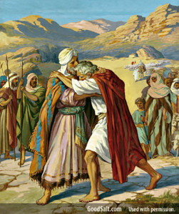 Jacob and esau meet