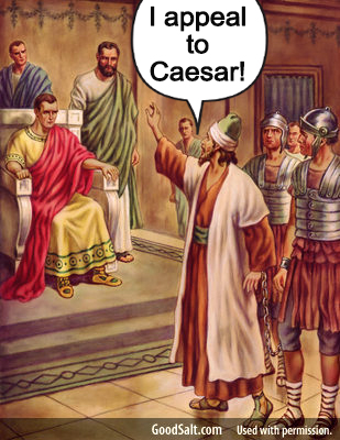 Appeal to ceasar flat