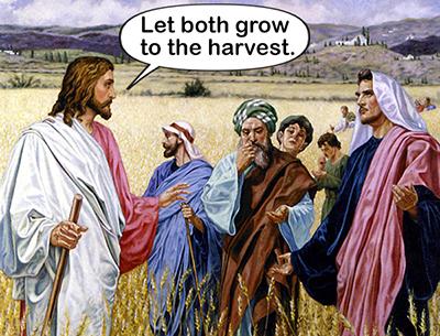Let both grow flat